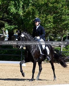 SVE 19 Ellexus Knight 020