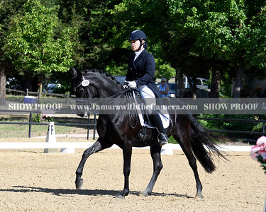 SVE 19 Ellexus Knight 021