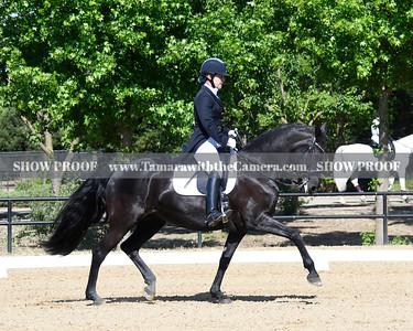 SVE 19 Ellexus Knight 035
