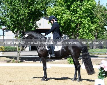 SVE 19 Ellexus Knight 042