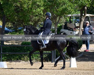 SVE 19 Ellexus Knight 001