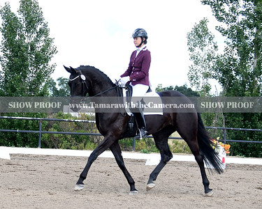 SVE 19 Fleur Noir 2327