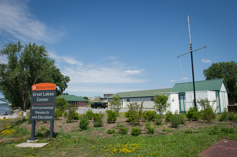 New landscaping created to improve migratory bird habitat at the Great Lakes Center at Buffalo State College.
