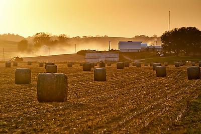 DA022,DP,sunset_harvest_DP