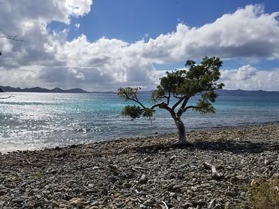 Tortola - Jost Van Dyke (21)