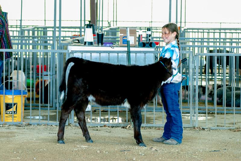 20190428_flinthills_classic_cattle-5