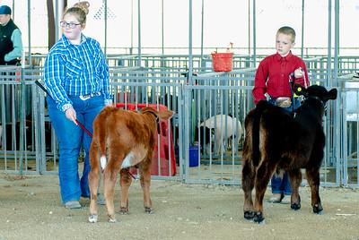 20190428_flinthills_classic_cattle-2