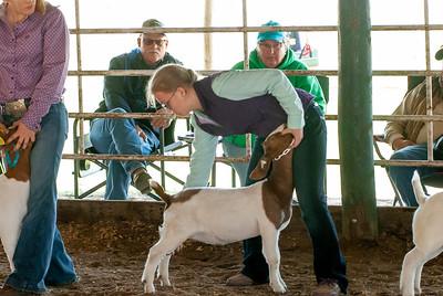 20190428_flinthills_classic_goats-17