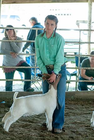 20190428_flinthills_classic_goats-21