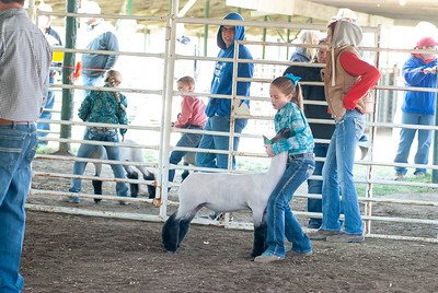 20190428_flinthills_classic_sheep-16