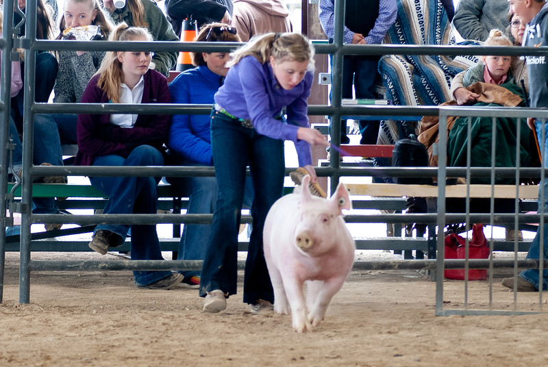 20190428_flinthills_classic_swine-21