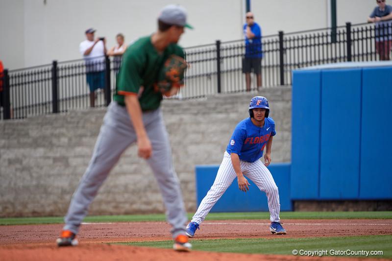 University of Florida Gators Baseball Miami Hurricanes 2019