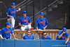University of Florida Gators Baseball Miami Hurricanes 2019