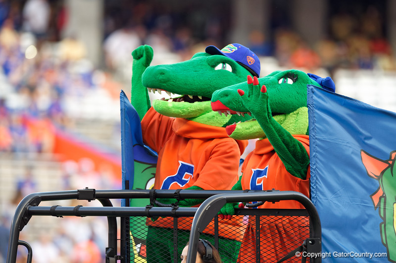 Albert and Alberta as the Gators faced the Tennessee-Martin Skyhawks at Ben Hill Griffin Stadium in Gainesville, Florida on September 8th, 2019 (Photo by David Bowie/Gatorcountry)