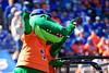 Albert the Gator takes the field as the Gators defeat the Vanderbilt Commodores 56-0 at Ben Hill Griffin Stadium in Gainesville, Florida on November 9th, 2019 (Photo by David Bowie/Gatorcountry)