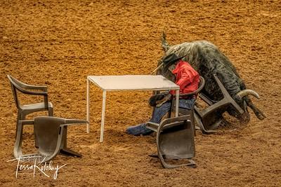 Cowboy Poker-7513