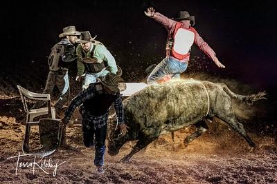 Cowboy Poker-7498