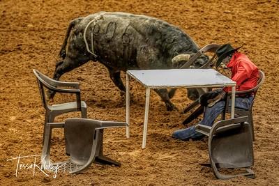 Cowboy Poker-7510