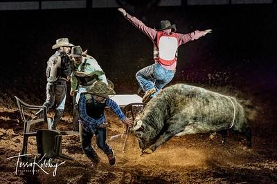 Cowboy Poker-7497