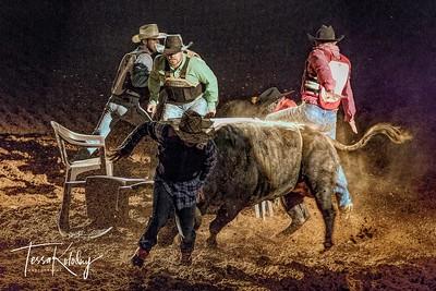 Cowboy Poker-7499