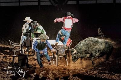 Cowboy Poker-7496