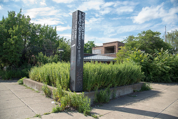 190722 Overgrown Center 1