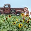 190801 Sunflowers 1