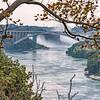 190819 Suspension Bridge 3