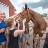 "James Neiss/staff photographer <br /> Lockport, NY - Lots of Love: Chester, ""Eastern Giant, "" a retired thoroughbred race horse, gets lots of love from the students at the Niagara County 4-H Horse Camp at the Niagara County Fairgrounds."