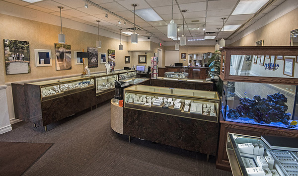 James Neiss/staff photographer <br /> Lockport, NY - Mills Jewelers at 51 Main Street, Lockport.