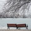190206 Freezing Rain 5