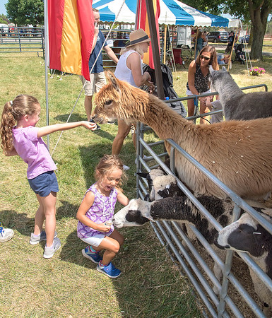 James Neiss/Staff Photographer<br /> Lockport, NY - Adeleyh Williamson, 4 and cousin Anneliese Weisbeck, 6, were excited to feed the animals in the petting zoo at the Niagara County Fair.