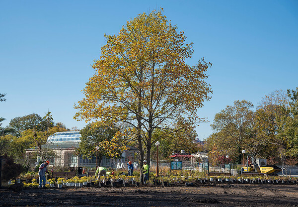 James Neiss/staff photographer <br /> Niagara Falls, NY - Crews at Niagara Falls State Park work on the new landscaping near the main park entrance.