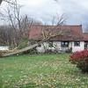 191101 Wind Damage 1