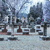 James Neiss/staff photographer <br /> Niagara Falls, NY -Most everything was coated with ice at the Oakwood Cemetery as some freezing rain continued on Thursday.