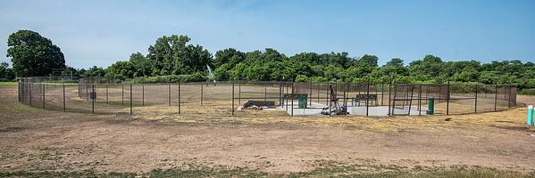 190708 Dog Park 2