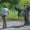 James Neiss/staff photographer <br /> Lockport, NY - Niagara County Sheriff Lt. Jimmy Hildreth, head k-9 trainer,  took advantage of the cooler morning temperatures on Tuesday to dress up in a safety suite to work with Deputy Rich Bull and his dog Chief in an abandoned parking lot in Wrights Corners.