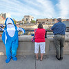 James Neiss/staff photographer <br /> Lockport, NY - Kitty Fogle, the Lockport Canal Shark, hangs out at the Lockport Locks with sightseers.