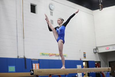 2019 Gymnastics season