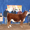 5th Overall Steer