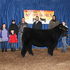 Grand Overall Steer