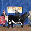 3rd Overall Steer
