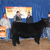 Reserve Grand Overall Steer