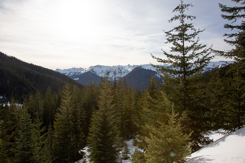 Snowshoeing on White Pass, , Forest Road 1284