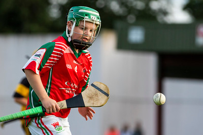 11th August 2019 Gleeson Concrete Donohill Ltd West Tipperary Under 12 A Hurling Final Cashel King Cormacs vs Arravale Rovers