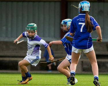 11th August 2019 Tipp Mid West Radio West Tipperary Under 12 C Hurling Final Eire Og Annacarthy vs Rosegreen in Dundrum
