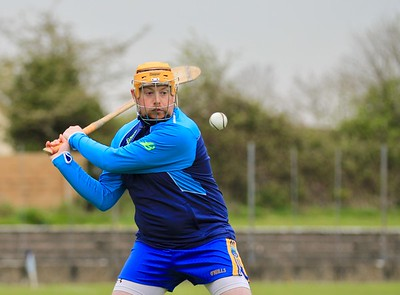 13 April 2019 Ballinahinch 0-17 Borrisokane 4-13 North Tipperary Intermediate hurling championship