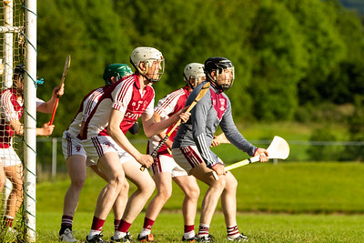 Friday, June 14 2019 North Tipperary Junior (A) Hurling Championship - Roscrea vs Borris-Ileigh