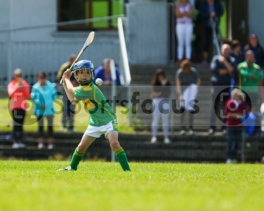 5th August 2019 North Tipperary Under 12 D Shield Final Portroe vs Kiladangan
