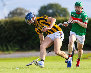 Upperchurch Drombanes Padraig Greene and Loughmore Castleiney's John Meagher